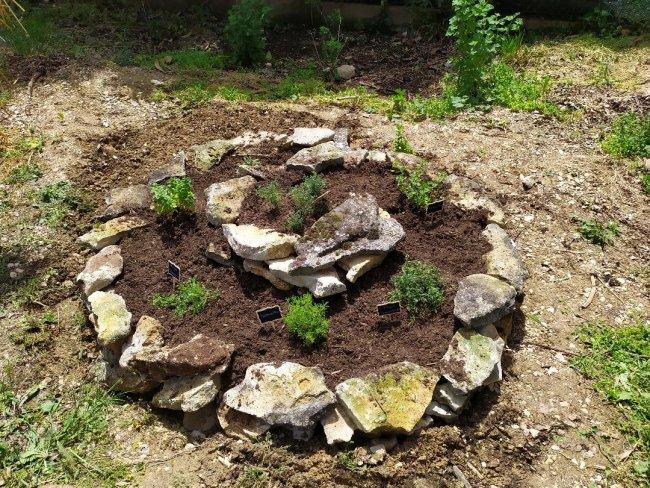 La nouvelle spirale aromatique de notre jardin